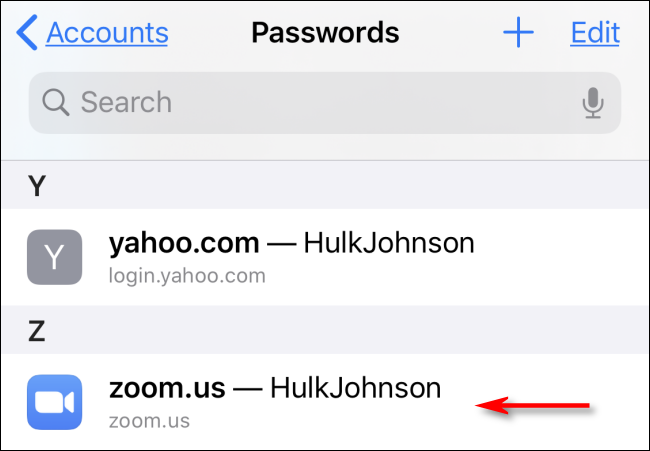 Tap an account name to see a saved Safari password in Settings on iPhone