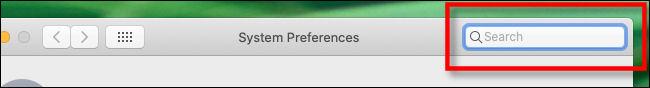 Barra de búsqueda de preferencias del sistema en Mac