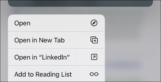 The context menu that appears when long-pressing a link in Safari.