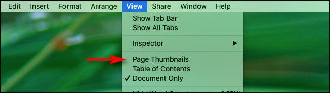 "We clicked ""View"" and ""Page Thumbnails"" to create a keyboard shortcut."