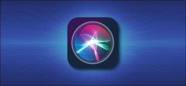 Apple Siri iPhone and iPad Icon Hero