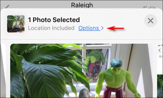 """Toque em """"Opções"""" antes de compartilhar uma foto no iPhone."""