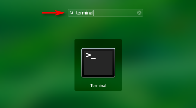 """Open Launchpad and type """"terminal"""" then hit enter."""