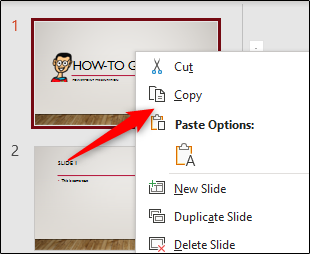 Copy options in the PowerPoint menu