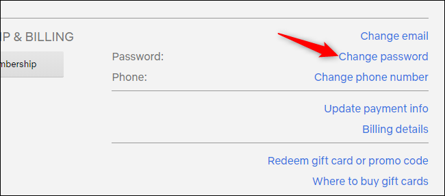Changing a Netflix account's password from the account settings page.