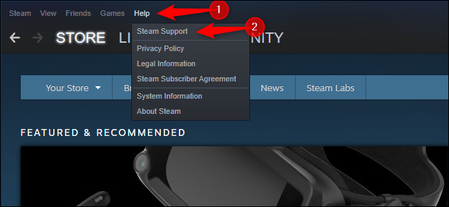 Opening Steam support.