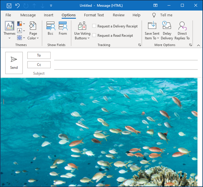 An Outlook email with an underwater image of tropical fish as the background.