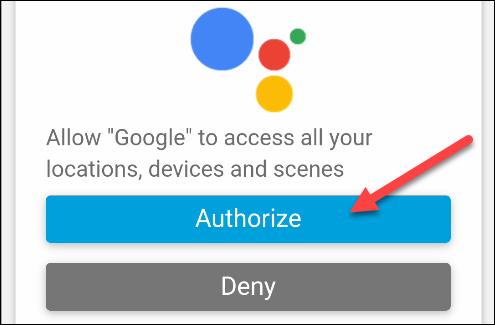 autorizar a google a acceder a cosas inteligentes