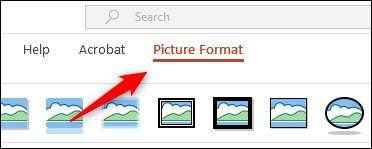 """Click """"Picture Format."""""""