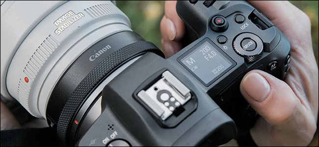Someone holding a Canon camera with a mirrorless adapter.