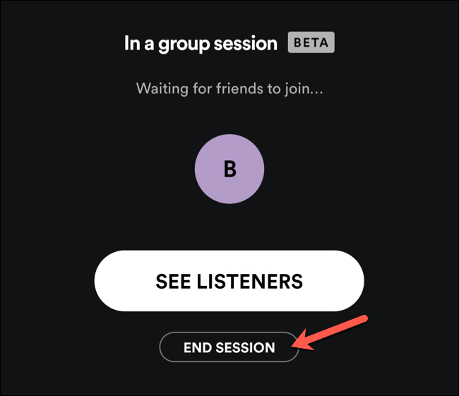 Tap End Session to end a Spotify group session.