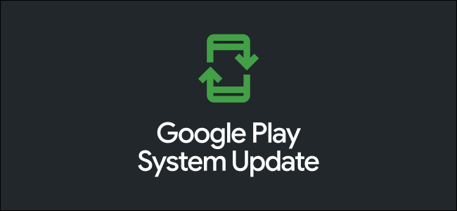 "The Google Play ""System Update"" logo."