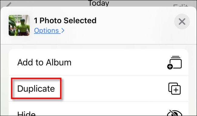 Tap Duplicate in the Share menu in Photos on iPhone.