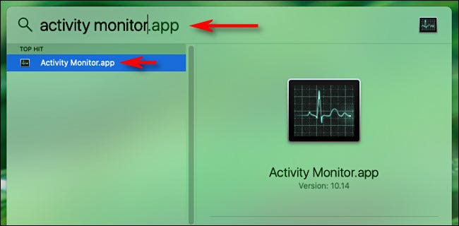 "Type ""Activity Monitor"" in the Spotlight search bar."