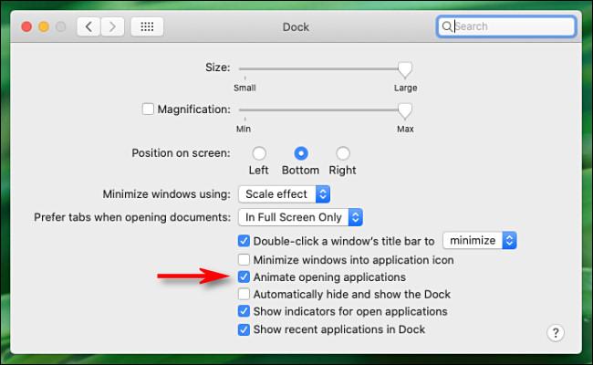 """En las preferencias de """"Dock"""" en Mac, desmarque """"Animar aplicaciones de apertura""""."""