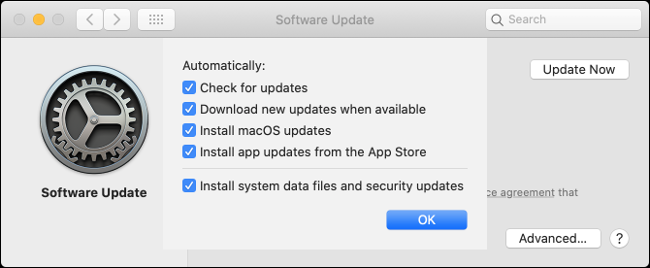 """The """"Software Update"""" settings on Mac."""