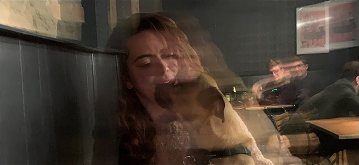 A blurry photo of a woman and a dog.