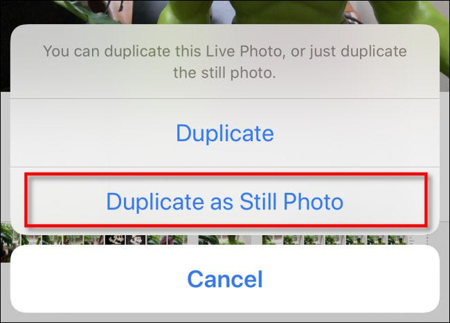 """Tap """"Duplicate as Still Photo"""" in Photos on iPhone."""