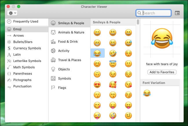Examining the Character Viewer window on Mac.