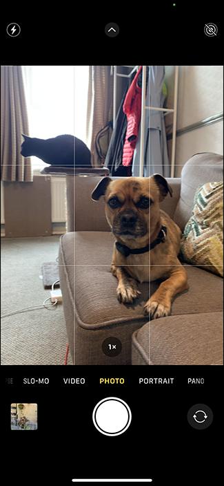 taking photo iphone