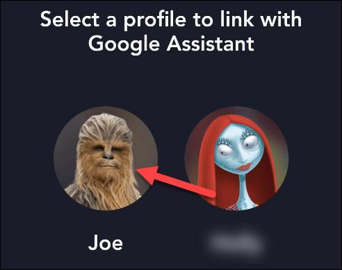 seleccione el perfil de usuario