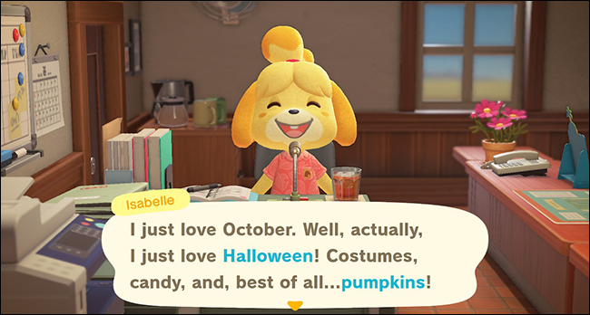 ACNH Isabelle pumpkin announcement