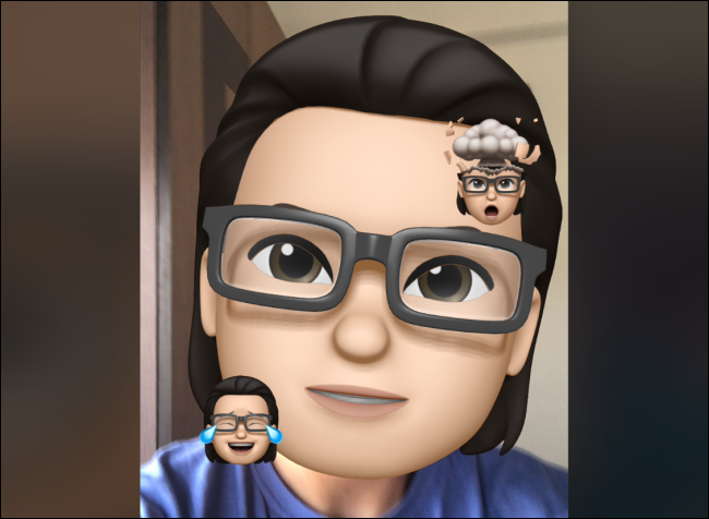 Memoji With Memoji Stickers in FaceTime