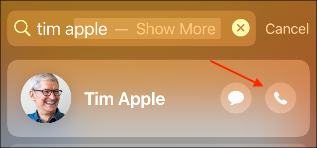 Tap Call button from Spotlight Search