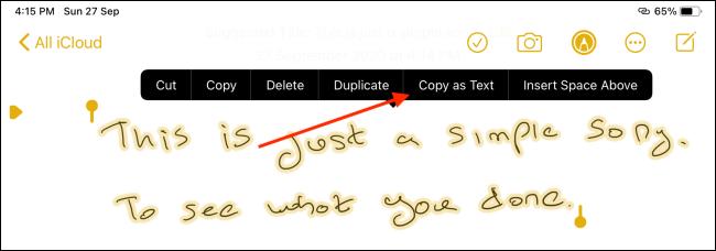 Tap Copy as Text