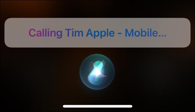 Using Siri to call someone