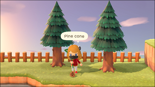 animal crossing new horizons pine cone