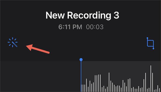 Tap Enhanced Recording on iPhone Voice Memos