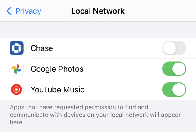 The Settings > Privacy > Local Network screen on an iPhone