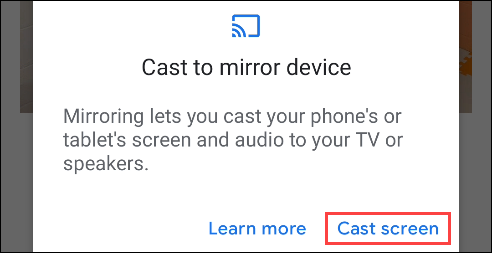 """Accept the terms by tapping """"Cast Screen"""""""