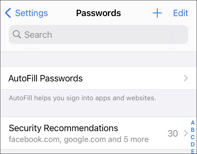 """The """"Passwords"""" menu in iOS 14."""