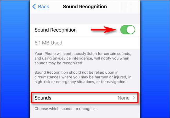 In Impostazioni su iPhone, attiva Riconoscimento audio.