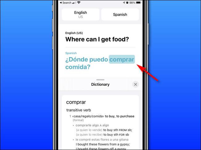 En el modo Diccionario de Apple Translate en iPhone, puede tocar las palabras para ver sus definiciones.