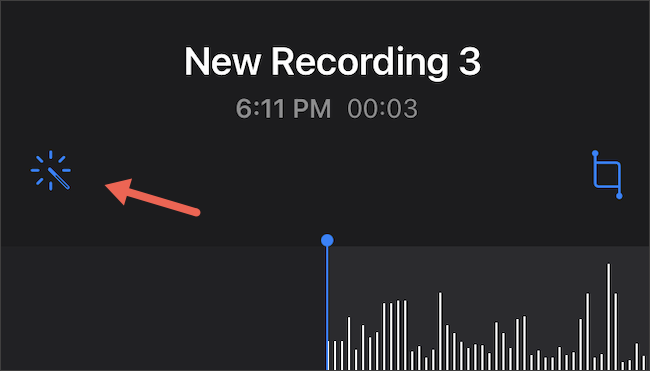 Tap Enhanced Recording on iPhone Voice Memos