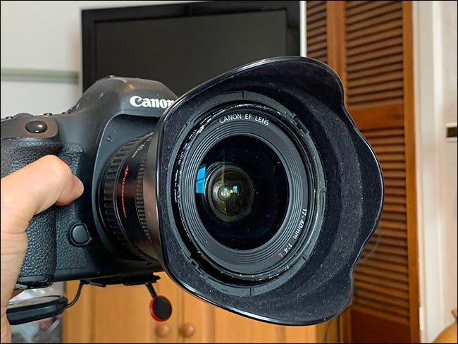 A petal lens hood on a Canon camera.