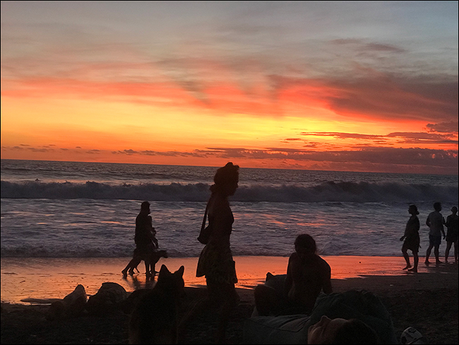 Silhouettes of people walking on the beach at sunset.