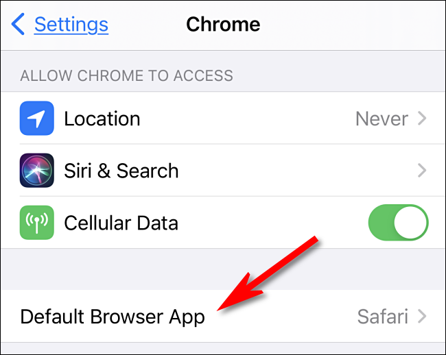 "Select the ""Default Browser App"" option in iPhone Settings"