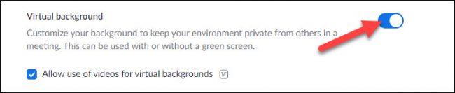 enable virtual backgrounds