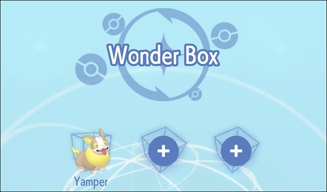 A character named Yamper in a Pokémon Home Wonder Box.