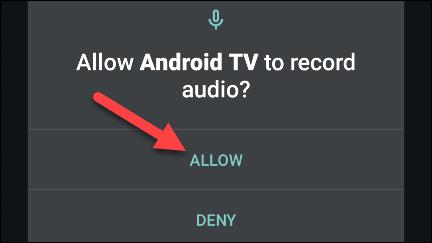 allow voice permission