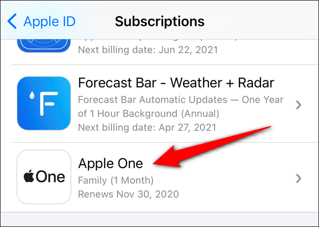 Select your Apple One Subscription from the list
