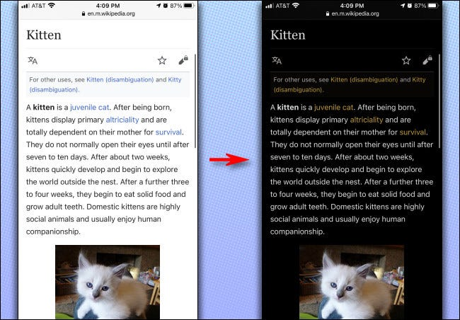 An example of how Smart Invert works on the iPhone