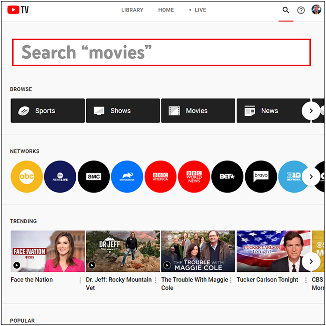 type in the name of the show or movie you are searching for