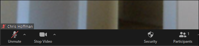 The Unmute button shows you're muted in Zoom