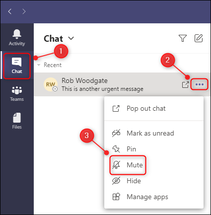 """The """"Mute"""" menu option for a chat."""