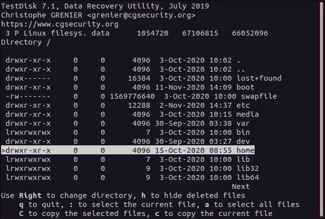 The File-selection menu in testdisk in a terminal window.